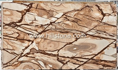 Tropical Dream Marble Polished Tiles