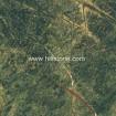 Tropic Rain Forest Green Marble